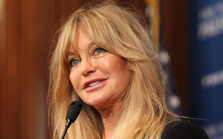 Goldie Hawn's Never Admitted of Plastic Surgery, But There Isn't a Lot to Be Answered