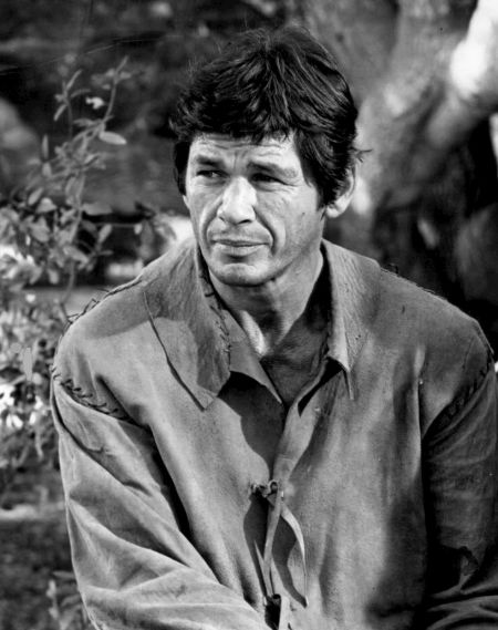 Charles Bronson in a grey shirt poses a photo for a shoot.